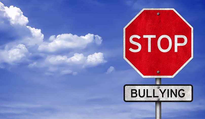 The School Bully: Recognition And Response